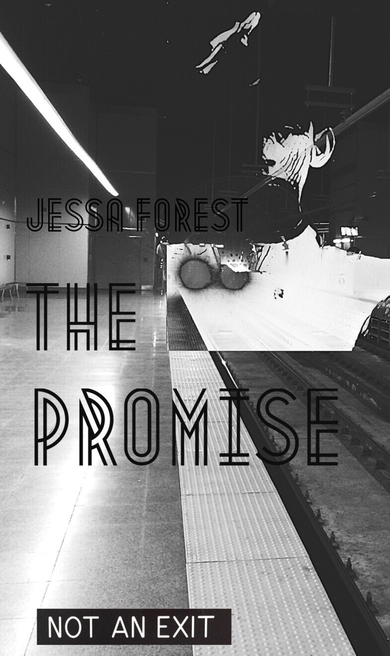 The Promise: a grimdark dystopian short story